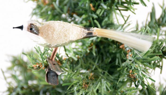 Vogel k. z 7
