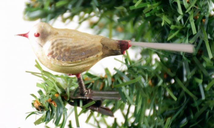 Vogeltje k. f 21