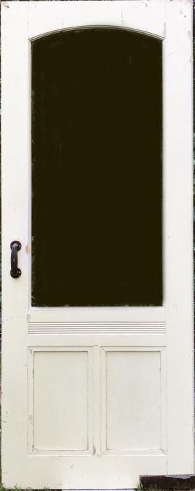 Oude paneeldeur 2
