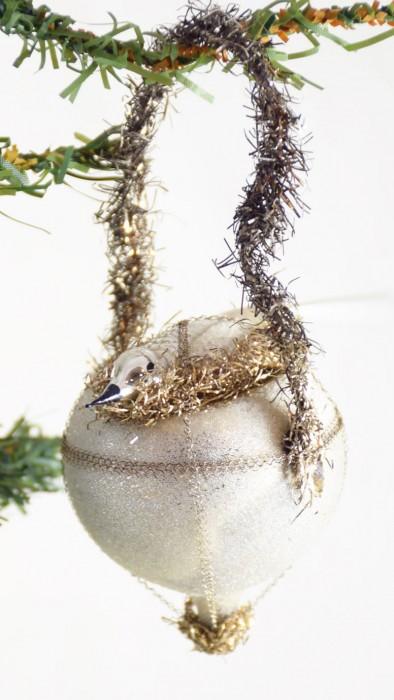Vogel op nest