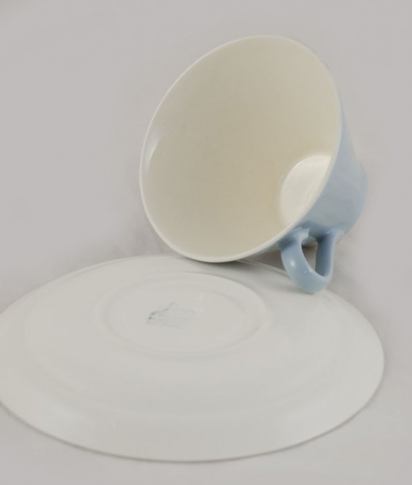 Cup and saucer am. p 9