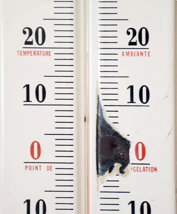 RVS met thermometer