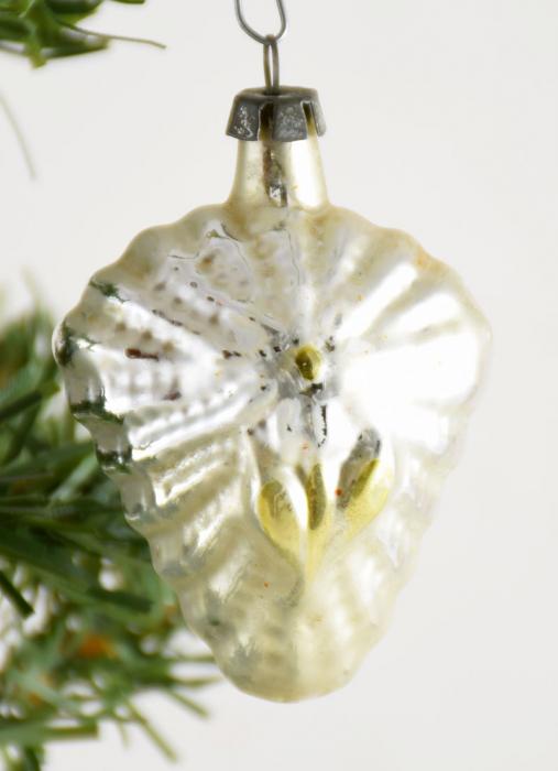 Vlinder k. f 14