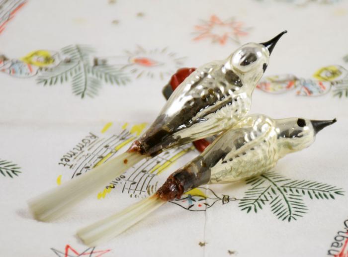 Two birds k. z 20