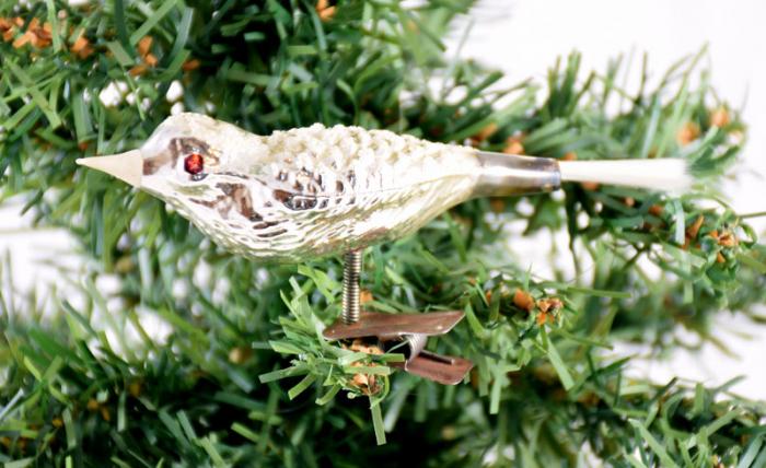 Vogeltje k. z 22