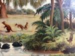 Schoolplaat Australische Planten en Dieren nr. 16 gereserveerd